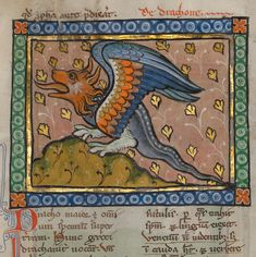A Dragon, Bestiary ca. 1270