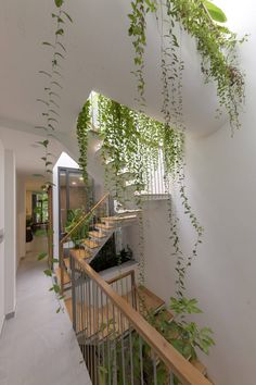 KHUÔN studio shields an inner oasis with 'armoured' façade in ho chi minh city Dream Home Design, My Dream Home, Green House Design, Dream Apartment, Apartment Bathroom Design, Aesthetic Room Decor, House Goals, Dream Rooms, Plant Decor