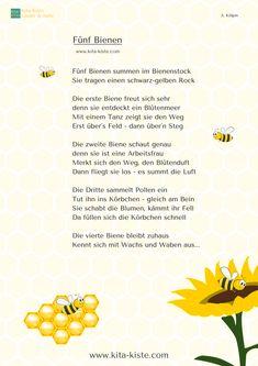 """""""Fünf Bienen"""" - Fingerspiel für #kindergarten und #grundschule, beschreibt die Arbeitsteilung im Bienenstock - aus """"Reime & Gedichte 1"""" www.kita-kiste.com"""