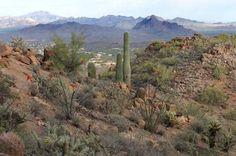 McDowell Mountains, Scottsdale, AZ