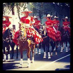 A minutos de comenzar su participación en desfile de la Revolución Mexicana, las imponentes amazonas #instagramMILENIO Foto: @hzamarron