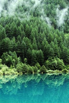 Jiuzhaigou Valley National Park and UNESCO World Heritage Site, China (green, teal, turquoise)