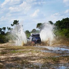 Land Cruiser 80 Series. Miami Fl
