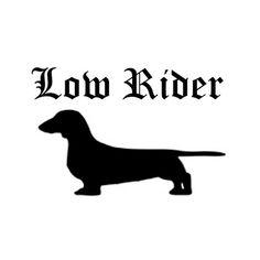 Dachshund (the original low rider) Dachshund Funny, Mini Dachshund, Daschund, I Love Dogs, Puppy Love, Cute Dogs, Gato Animal, Weenie Dogs, Doggies