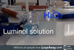 H2O2 + luminol
