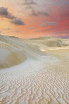 Sand Dunes at the Naumburg National Park - near Cervantes,Wheatbelt Region, West Australia, Australia.