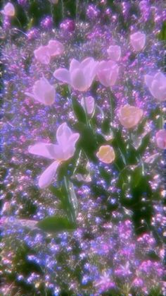 Violet Aesthetic, Sky Aesthetic, Aesthetic Themes, Flower Aesthetic, Aesthetic Movies, Aesthetic Videos, Aesthetic Pictures, Aesthetic Pastel Wallpaper, Aesthetic Backgrounds