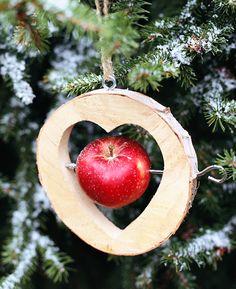 Grüne Weihnachten: Umweltfreundlich feiern                              …