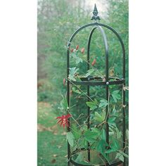 Traditional Garden Plant Support Obelisk Tower A traditional Fleur De Lys Tower for your climbing pl Pergola Shade, Diy Pergola, Garden Plant Supports, Wisteria Plant, Clematis Trellis, Trellis Panels, Virginia Creeper, Border Plants, Tower Garden