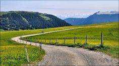 Alpi di Siusi - walking in paradise