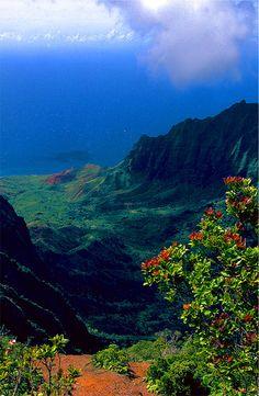 ✯ Hawaiian Cliffs