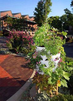 これなら高齢者でも。50種類の野菜が育てられる縦型菜園「Garden Tower」