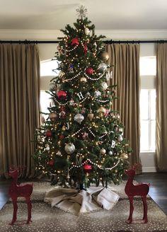 Beautiful Christmas tree! #christopherradko