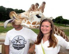 Greatest Animal Photobombs | Animal photobombs - Best animal photobombs: Hilarious critters ready ...