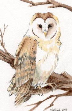 Barn Owl Watercolor Painting Wildlife Art OSWOA by KetturahsArt, $25.00