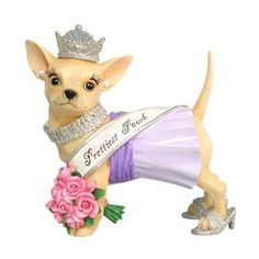 Aye Chihuahua Pageant from Westland Giftware