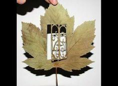 Arte em folhas.
