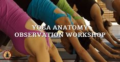 Yoga Anatomy Observation Workshop - This workshop guides you through the process of seeing the anatomy in the student as they stand, move, and are in asana.