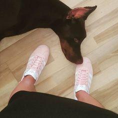 adidas Кроссовки Gazelle - красный | adidas Россия