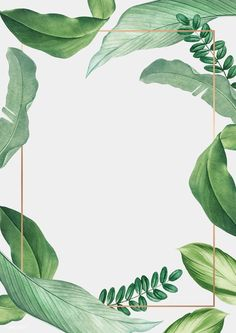 premium illustration of Hand drawn tropical leaves white poster Hand drawn tropical leaves white poster vector Flower Backgrounds, Wallpaper Backgrounds, Iphone Wallpaper, Leaf Background, Background Patterns, Tropical Background, Vector Background, Greenery Background, Tropical Frames