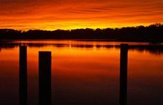 Pilings; Churn Creek, Chesapeake Bay; Worton, Maryland, USA.  October 2013.