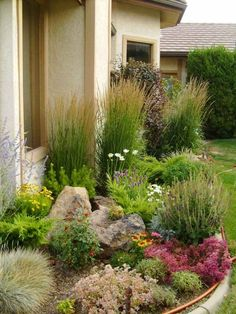 jardin-rocaille-idées-conception-plantes-graminées