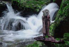 #流木オブジェ 1999年~2002年撮影-8  ★   #流木 #流木アート #屋久島アート #インテリア #Driftwood Art #Interior