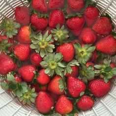 Clean strawberries by soaking in water and white vinegar on a salad spinner.  Drain them and spin them to dry off.  #strawberries