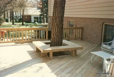 Deck with Seating around tree