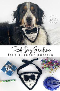 dog collar pet clothes over the collar. Dog bandana with pom poms bones bandana pet accessories doggy bandana pet style dog clothes