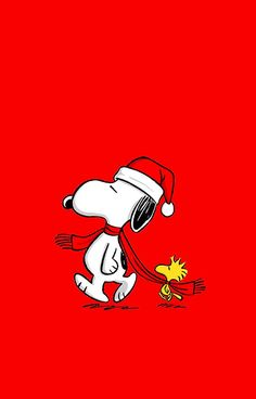 Snoopy and Woodstock Peanuts Christmas, Charlie Brown Christmas, Charlie Brown And Snoopy, Christmas Fun, Snoopy Images, Snoopy Pictures, Peanuts Cartoon, Peanuts Snoopy, Snoopy Love