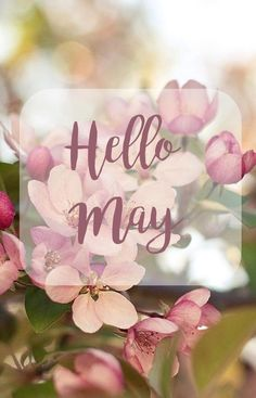 Welcome May! Hoping this month brings you happiness and flowers. Seasons Months, Days And Months, May Days, Seasons Of The Year, Months In A Year, Spring Months, Spring Time, Neuer Monat, May Quotes