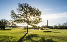 Steve Smyers Golf Course Architects | Maridoe Golf Club | Short Game Practice | Photography-Will Graham Photography | stevesmyers.com/ | #SmyersDesign #GolfCourseDesign #GolfCourses #ssgca