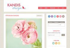 Bem vindo ao novo blog!