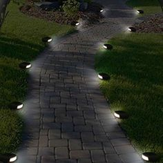 Pathway and bollard lights: practical signposts through the nocturnal garden : Pathway and bollard lights: practical signposts through the nocturnal garden Solar Path Lights LED Pathway Landscape High Quality Garden Path Lighting, Outdoor Path Lighting, Bollard Lighting, Lighting Ideas, Outdoor Walkway, Backyard Lighting, Unique Garden, Garden Paths, Walkway Garden