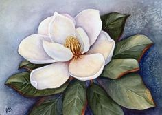 Magnolia Blossom IV Painting by Artist Barbara Ann Robertson