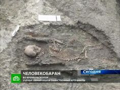 "If the reports are true, bizarre skeletons have been unearthed in Nevinnomyssk, Stavropol Krai, Russia that would point to a systematic floccinaucinihilipilification of all aspects surrounding macro evolution. Russia NTV reports Stavropol archaeologists have discovered the unearthing of bizarre skeletons when opening an ancient mound. The mound first produced a strange skeleton that can be best described as ""Satyr like""."