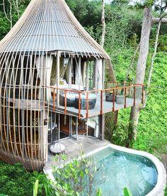 tree house pool villa at if its hip its here keemala resort in Phuket, Thailand Phuket Resorts, Hotels And Resorts, Villa Phuket, The Places Youll Go, Places To Go, Tree House Designs, Resort Villa, Bali Resort, Phuket Thailand