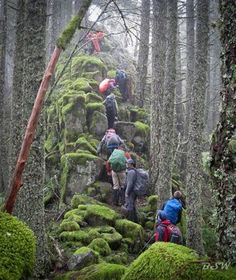 The 13 Most Grueling Hiking Trails In America. This is Ruckle Ridge Loop in Oregon