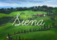 'Siena' is named after the romantic Tuscan town of your dreams.