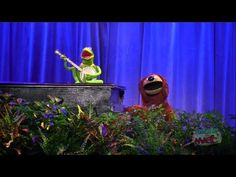 "So funny.. So touching...a great video! Kermit and Rowlf sing ""Rainbow Connection"""