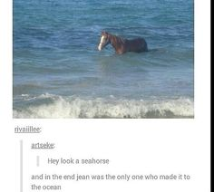 Attack on Tumblr: Seahorse...Jean, the only one who made it to the ocean