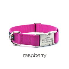 Laser Engraved Personalized Buckle Webbing Dog Collar - Raspberry by LaserPets on Etsy https://www.etsy.com/listing/76829426/laser-engraved-personalized-buckle