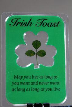 Irish Quotes, Irish Sayings, Irish Jokes Irish Prayer, Irish Blessing, San Patrick, Irish Jokes, Irish Humor, Immigration Quebec, Irish American, American History, American Women