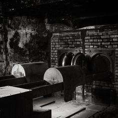 Ovens in Auschwitz
