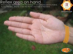 Reflex area to stimulate Svadisthana, Sacral Chakra.   Yoga Wholistics INQ.
