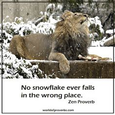 No snowflake ever falls in the wrong place......