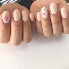 桜ネイル♪ #グラデーション #フラワー #オフィス #デート #女子会 #春 #ピンク #ジェルネイル #お客様 #和 #ワンカラー #NAILSALON_ALMA #ネイルブック