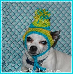 a89bfa181e2 Ravelry  Dog Beanie with Pompom pattern by Sara Sach Dog Beanie