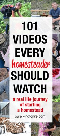 View all of our homesteading videos where you can see us transition from our life in the city to living off the grid!